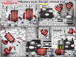Bob Schroeder | 2014 | Mystery birds disrupt criminal trial | Preview