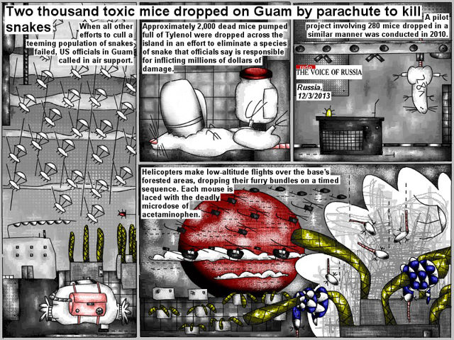 Bob Schroeder | Two thousand toxic mice dropped on Guam by parachute to kill snakes | When all other efforts to cull a teeming population of snakes failed, U.S. officials in Guam called in air support. Approximately 2,000 dead mice pumped full of Tylenol were dropped across the island in an effort to eliminate a species of snake that officials say is responsible for inflicting millions of dollars of damage. A pilot project involving 280 mice dropped in a similar manner was conducted in 2010. Helicopters make low-altitude flights over the base's forsted areas, dropping their furry bundles on a timed sequence. Each mouse is laced with the deadly microdose of acetaminophen.